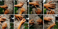 2012 Research Projekt an der Universitaet von Feira de Santana Video und Bewegung Kursleiter Frank Haendeler