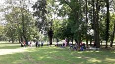 Abenteuer Sommerferien Workshop 4 Hoechst Stadtpark Gruppe - S Wedel - ÜberBrücken Frankfurt